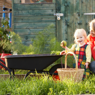 Top 10 Tips for Gardening in the Winter